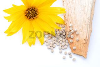 Biopolymer mit Holz und Blüte