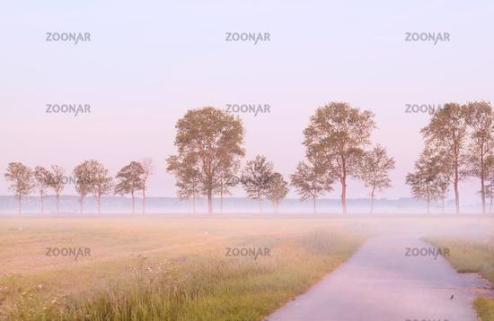 fog in morning in Groningen