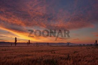 Landschaft der Provence