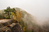 Blick auf Felsen und herbstliche Bäume in der Sächsische Schweiz