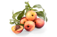 nectarines in bulk on a white background with soft shadow