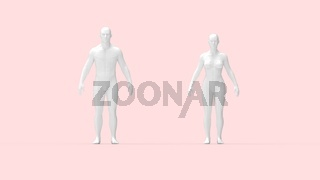 3D rendering of a man and a woman standing anatomical overview.