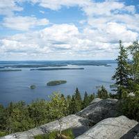 Koli Nationalpark in Finland