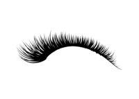 Black detailed realistic beautiful eyelashes, fashion element on white