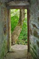 Zavelstein castle ruins in the Black Forest near Bad Teinach-Zavelstein, germany