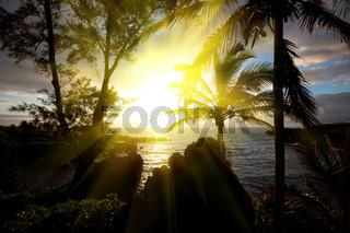 Hawaian sunset
