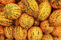 Spotted Turkish yellow melons (Kavun) displayed on food market in Kyrenia, Northern Cyprus