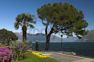 Uferpromenade am Lago Maggiore in Brissago