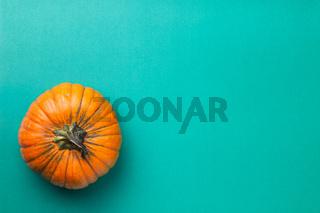 Orange Pumpkin On Turquoise Paper Background