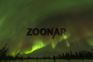 Nordlicht (Aurora borealis) ueber verschneiter Landschaft, Gaellivare, Lappland, Schweden
