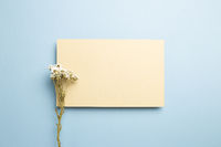 Beige memo pad with dry flowers on blue background. top view, copy space