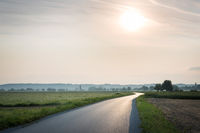 Country road in Burgenland in bright sunlight