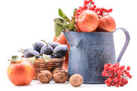 apples in a garden jug and other fruits on a white background with soft shadow