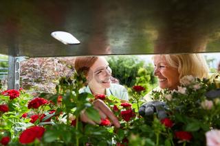 Junge Floristin und erfahrene Gärtnerin im Gartencenter