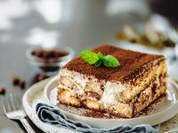 Tiramisu cake with mint, copy space