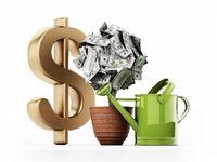Money plant in the pot. 100 dollar bills on the plant. 3D illustration