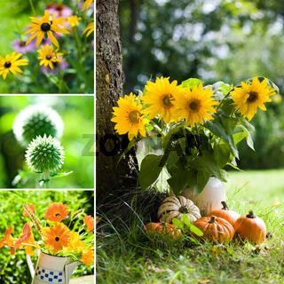 Herbstblumen Collage