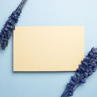 Beige memo pad with purple lavender flowers on blue background. top view, copy space