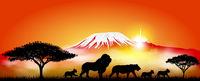 Lion, lioness and lion cubs
