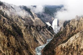 Nebel im Yellowstone Canyon
