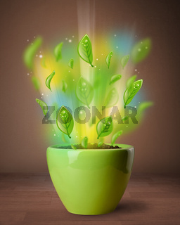 Glowing leaves coming out of flowerpot