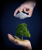 Nature in man hands