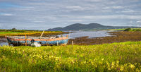 Marsh after ebb tide with old rusty paddle boat and mountain range in the background in Ring of Kerry