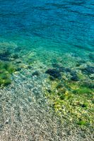 Blue sea water with stones in moss.