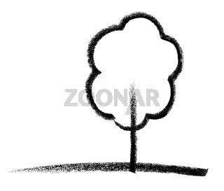deciduous tree sketch