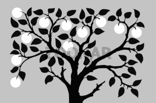 silhouette to aple trees on gray background