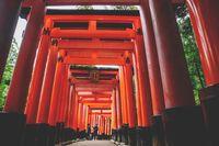 Japenese tourists in tunnel of orange torii gates at Fishimi Inari Taisha shrine in Kyoto, Japan
