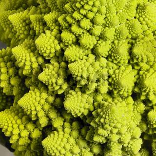 abstract romanesco cauliflower