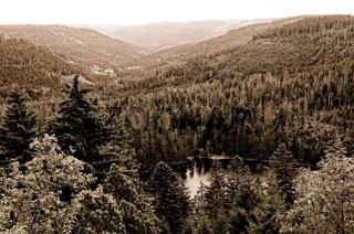 Wildsee Schwarzwald Deutschland sepia