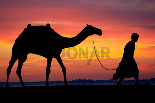 Silhouette of Arab with camel at sunrise