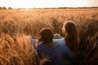 Hugging couple meeting sunset in a wheat field