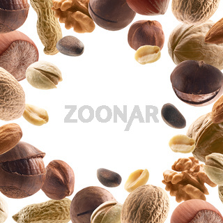 Large collection of different nuts on a white background
