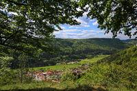 Waldweg zum Aussichtspunkt Paterfelsen