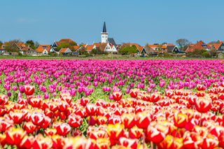 Skyline Den Hoorn Texel the Netherlands