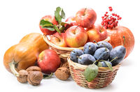apples in a basket and other fruits on a white background with soft shadow