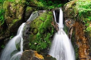 Wasserfall im Felsen und Moos