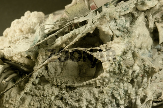 abstract rotten background