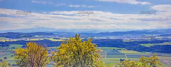 Alpenpanorama bei Lommis,  Kanton Thurgau, Schweiz