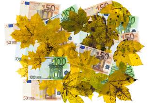 Vermischung von Laub und Eurobanknoten