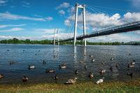 Pedestrian bridge in the water of Yenisei river