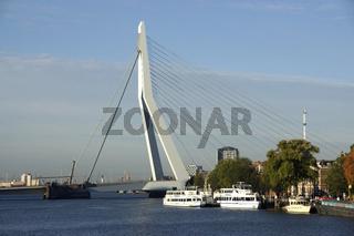 Erasmusbrücke über die Nieuwe Maas in Rotterdam, Niederlande