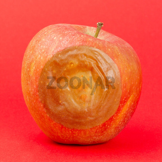 One bad red apple isolated