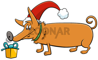 cartoon dog with gift on Christmas time