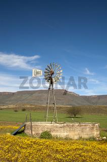 Solarstromunterstützte Windmühle einer Bewässerungspumpe in der Hantam Karoo am Fuss der Hantam Berge