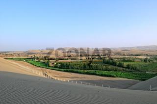 Landwirtschaft in der Oase Ica Peru