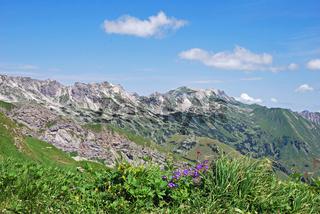 Blick vom Laufbacher Eck-Weg, Allgäuer Alpen, Allgäu, Bayern, Deutschland, Europa